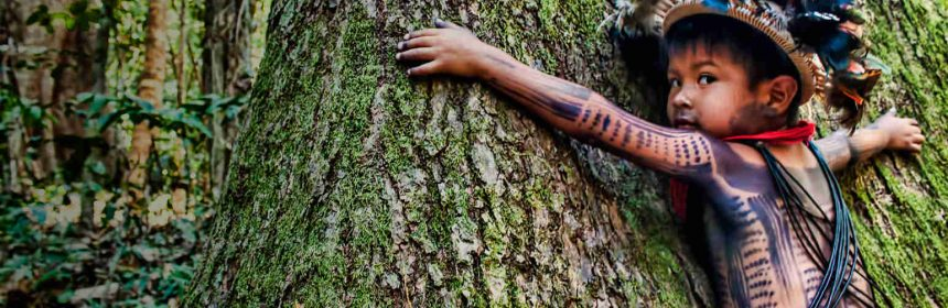 Tree Hugger in the Amazon