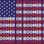 Boomers-the old generation who has overstayed their time in Congress.